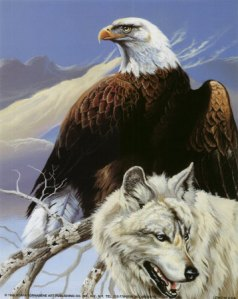 The-Eagle-and-the-Wolf-animals-32272286-358-450