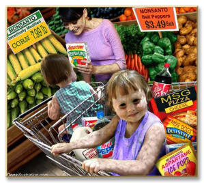 GMO-groceries